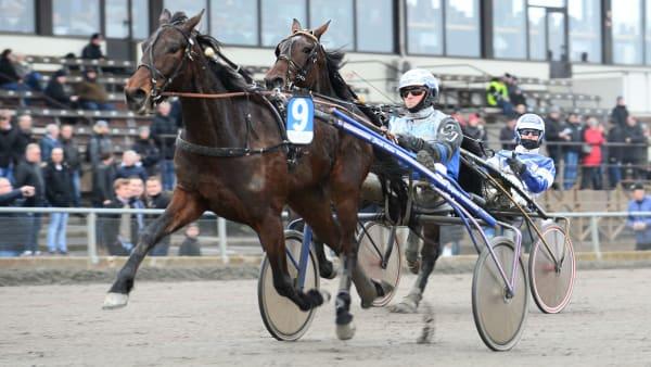 Foto: Malin Albinsson/TR Bild
