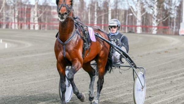 Foto: OLA WESTERBERG/ALN