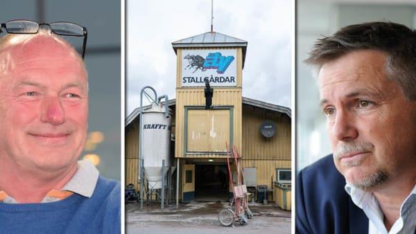 Foto: (Montage) Lars Jakobsson/Thomas Blomqvist/Göran Lindskog/Sidmakarn/TR Bild