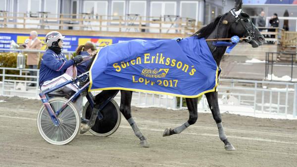 Foto: Micke Gustafsson/ALN