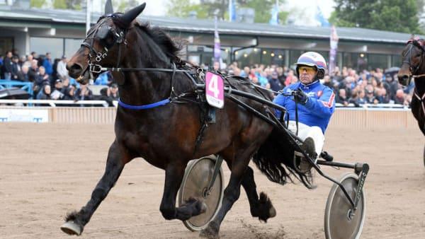 Foto: Malin Albinsson/Kanal 75