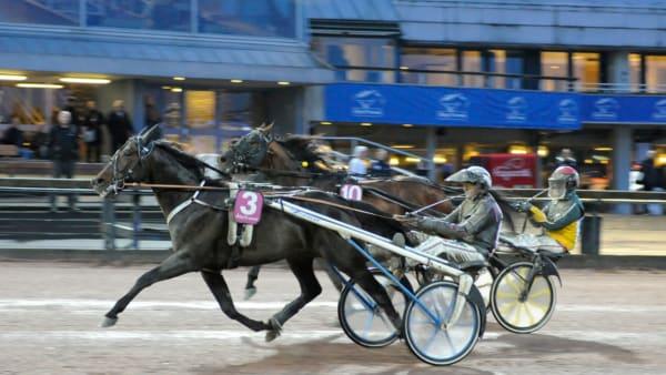 Foto: Annika Niklasson/Sidmakarn
