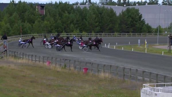 Se Peter Arnqvists treåring vinna för Johan Untersteiner.