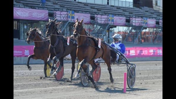 Här slår Ecurie D. svenskt rekord i tionde raka segern