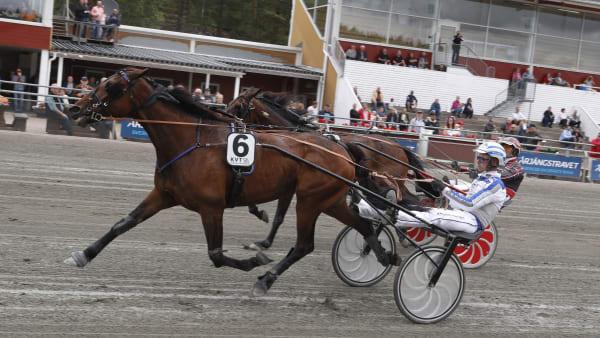 Foto: LENNART KIHLMAN/ALN