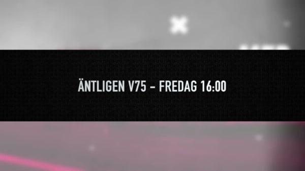 Äntligen V75 – Sveriges ny V75-magasin