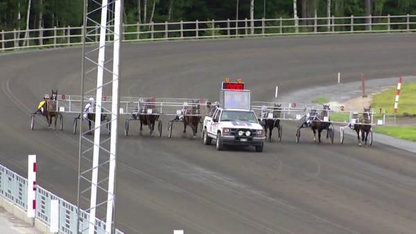 Se Alfa Linas svenska rekord i uttagningarna till Derbystoet för kallblod